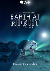 Earth at Night in Color-48152