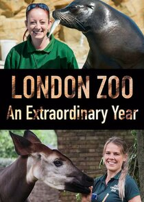 London Zoo: An Extraordinary Year