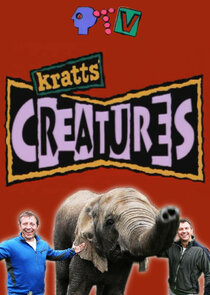 Kratts' Creatures-53148