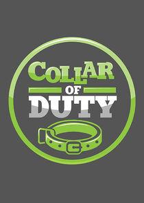 Collar Of Duty