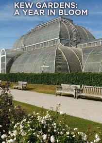 Kew Gardens: A Year in Bloom-53372