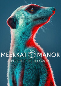 Meerkat Manor: Rise of the Dynasty-53865