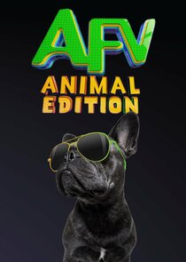 America's Funniest Videos: Animal Edition-53929