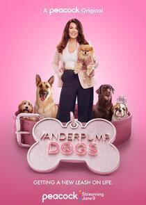 Vanderpump Dogs-54002