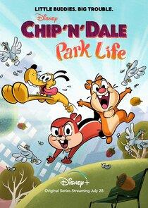 Chip 'n' Dale-48290