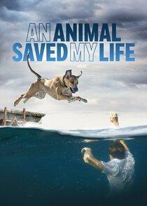 An Animal Saved My Life-54484