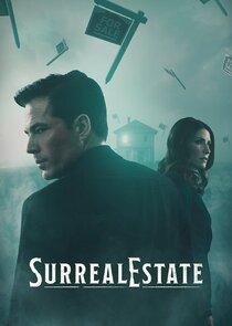 The Surrealtor-44787