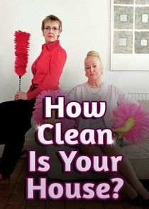 How Clean is Your House?-22962