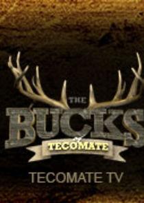 The Bucks of Tecomate