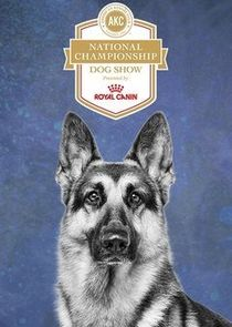 AKC National Championship Dog Show