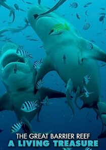 Great Barrier Reef: A Living Treasure