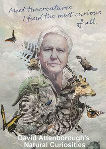 Капризы природы с Дэвидом Аттенборо