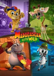 Madagascar: A Little Wild-47928