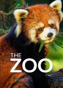 The Zoo-23563