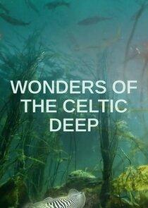 Wonders of the Celtic Deep